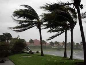 Hurricane IRMA Katrina